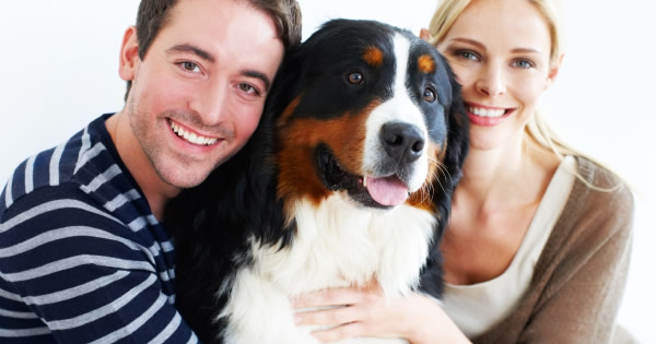 5 Things You Didnt Know About Dog Insurance