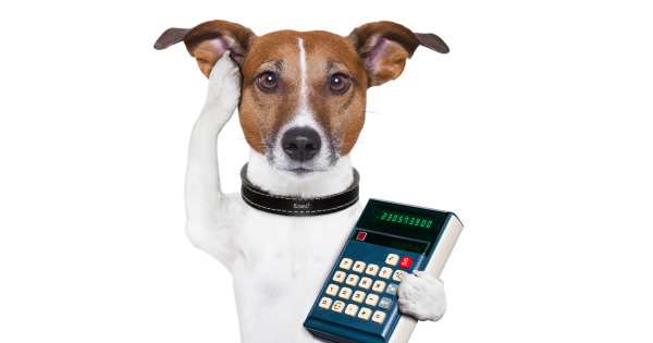 How Are Pet Insurance Rates Calculated