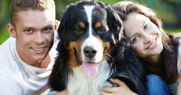 Pet Insurance States