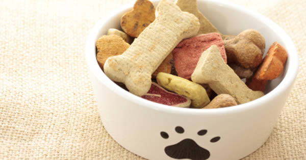 Read Pet Food Labels