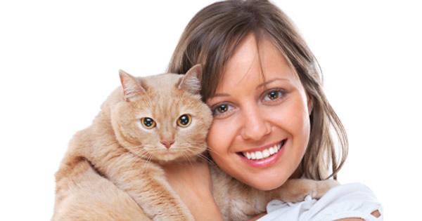 10 Most Common Cat Diseases