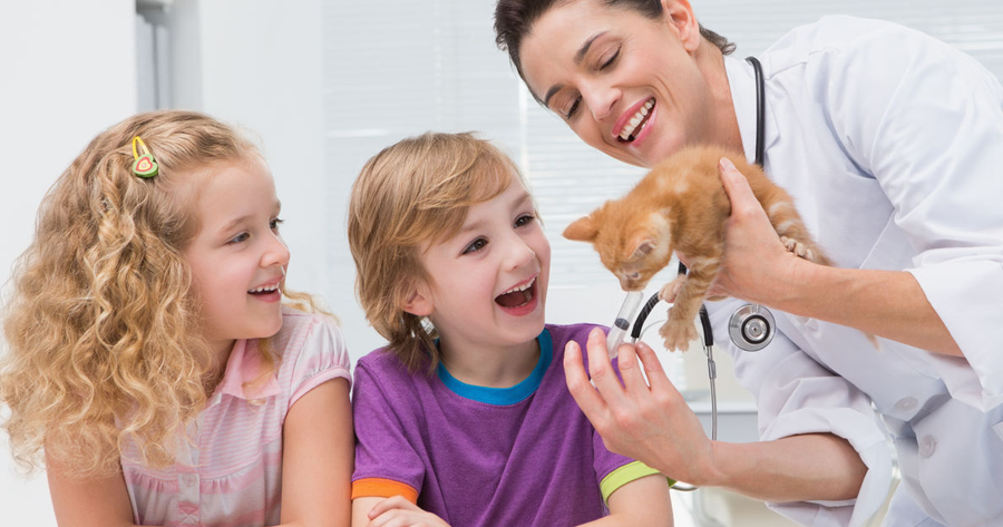 5 Things You Didnt Know About Cat Insurance