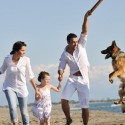 The Benefits of Pet Health Insurance