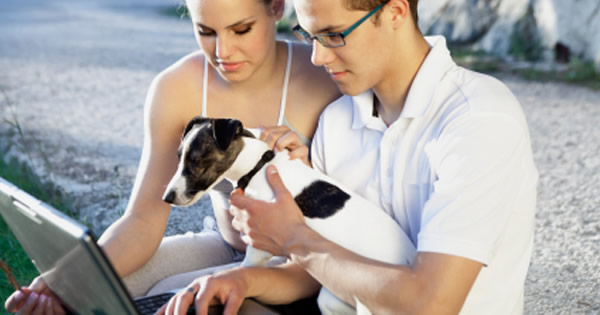 Common Exclusions Of Pet Insurance