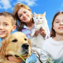 Why pet health insurance is important