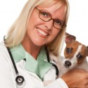 Is dog pet insurance like a PPO or HMO?