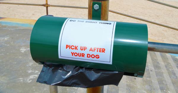 Eco Friendly Dog Supplies Go Green