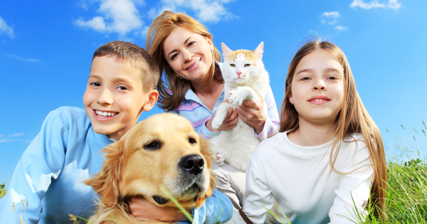 How To Be A Responsible Pet Owner