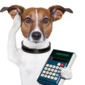 Calculation of pet insurance rates