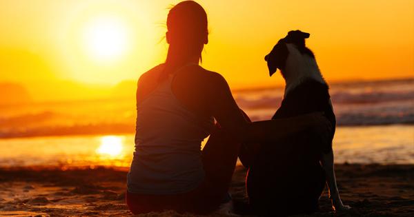 How To Do The Heimlich Maneuver On A Dog