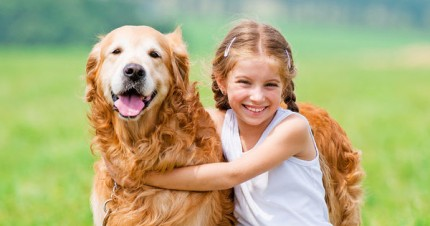 The Most Playful Dog Breeds Breed Center Petpremium