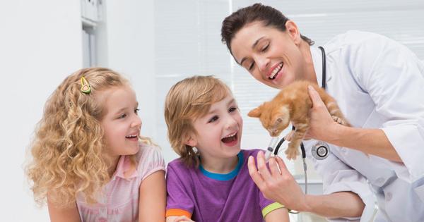 The Top Five General Questions Heard In Veterinary Practice