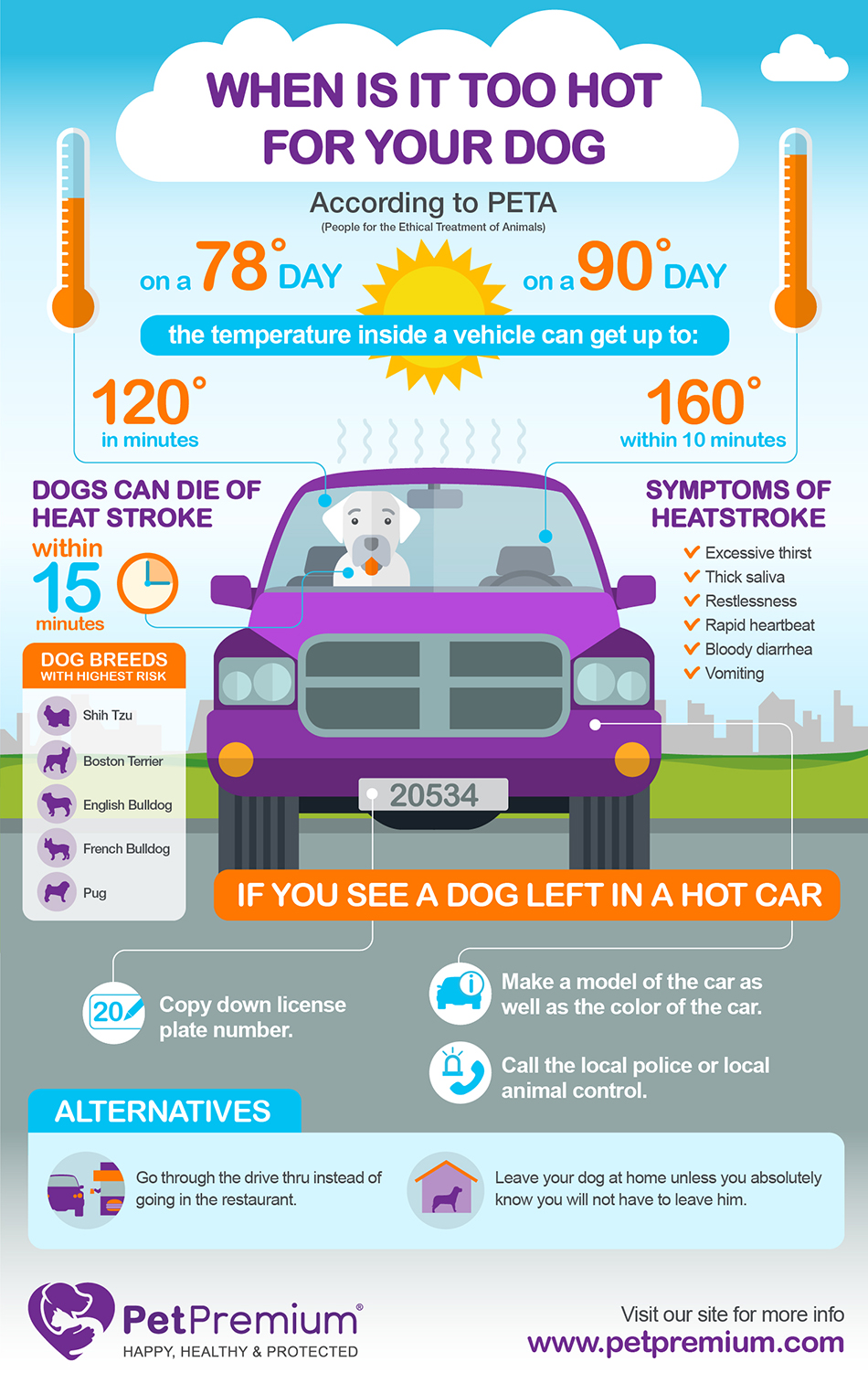 Heat Stroke in Dogs Infographic: When is it Too Hot?